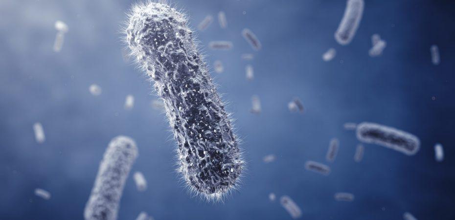 Germ Air Purifiers