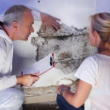 Mold Inspection