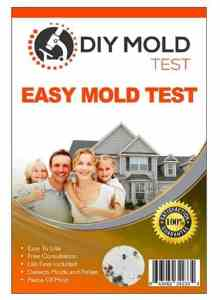 DIY Mold Detector Test Kit