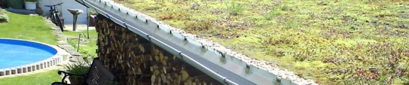 The image above shows the Riefa® Board prototype green roof that was planted over ten years ago. As you can see the roof still looks beautiful after a decade.