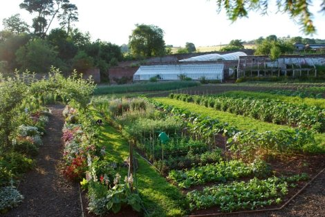 Penpont organic garden