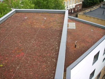 Green Roof Archives Specifier Review