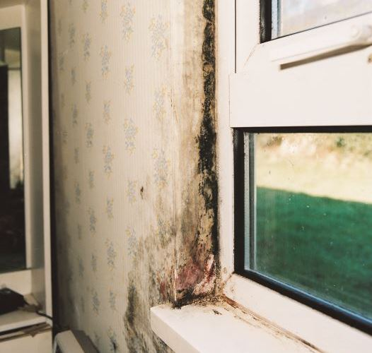 Vent-Axia CPD Webinar Reveals Importance of Good Indoor Air Quality