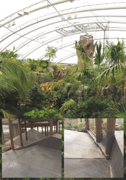 Kemper System Provides Solution For Chester Zoo S Monsoon