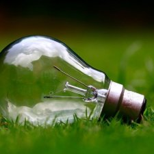 The business case for going green