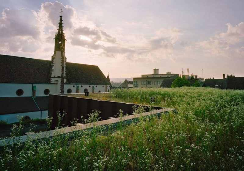 Can Green Roofs Create Greater Health and Well-Being?