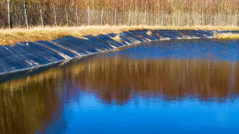 pond conservation