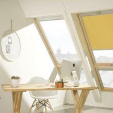 FDY-V Roof Windows
