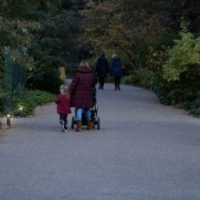 Artform Urban Lighting the way at RHS Wisley Gardens