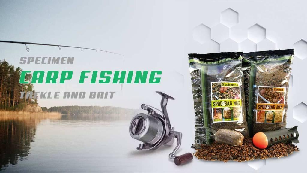 Carp Fishing Tackle and Bait