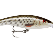 Rapala Deep Tail Dancer 13cm Live Roach