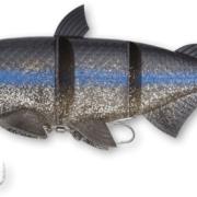 Quantum Junker DS 18cm White Fish