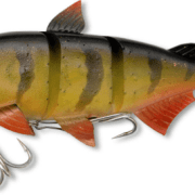 Quantum Junker DS 18cm Real Perch
