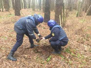 На Рівненщині піротехніки знищили сім артснарядів часів II Світової війни