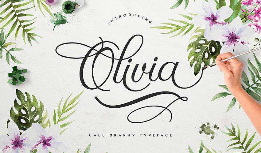 free font calligraphy typography script Olivia Script