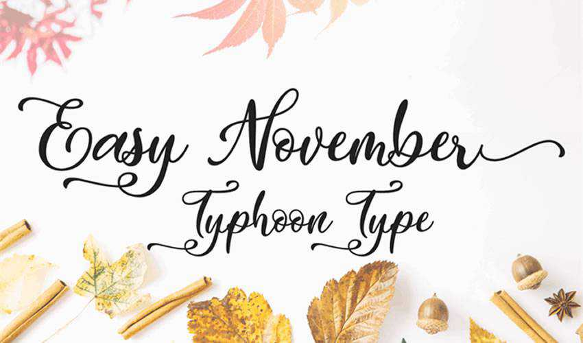 free font calligraphy typography script Easy November