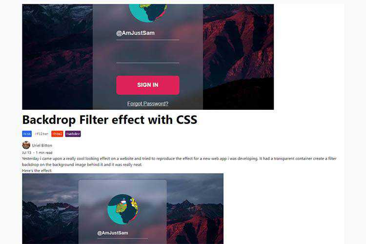 Example from Backdrop Filter effect with CSS
