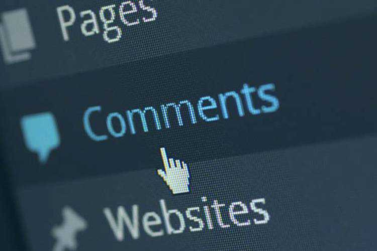 Example from Is the WordPress Comment System Still Relevant?