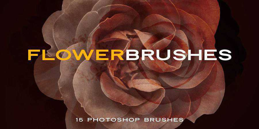 Elegant Flower free photoshop brushes ABR