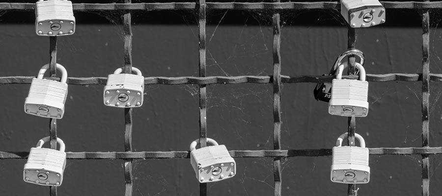 Padlocks on a fence.