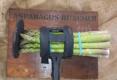 asparagus buncher
