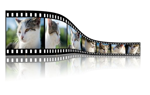 writing videos, videos, writing, editing, editor, writing, writing tips