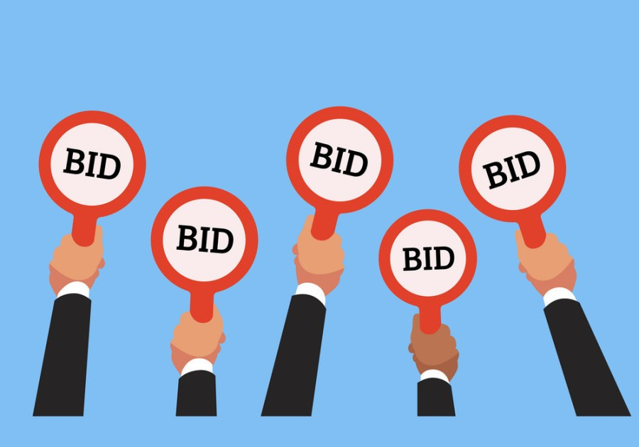 Long Spectrum auctions bidders