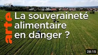 La souveraineté alimentaire est-elle en danger ? – Vox Pop – ARTE