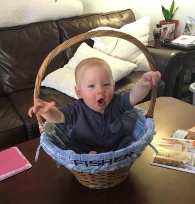 Hippity Hoppity, Easter's on it's way!