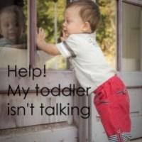 Help!  My toddler isn't talking - Part 2