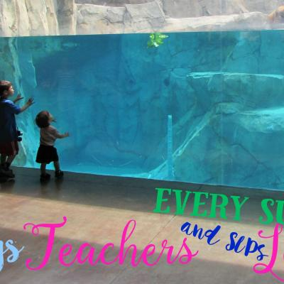 5 Things Teachers and SLPs Learn Every Summer