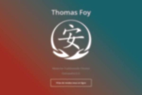 Thomas Foy by SpeedCom' - Création Développement hébergement et référencement SEO
