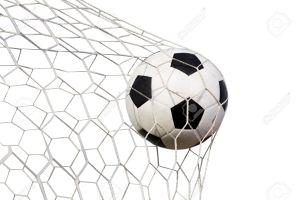 Ballenvangers / Doelnetten op maat OP AANVRAAG