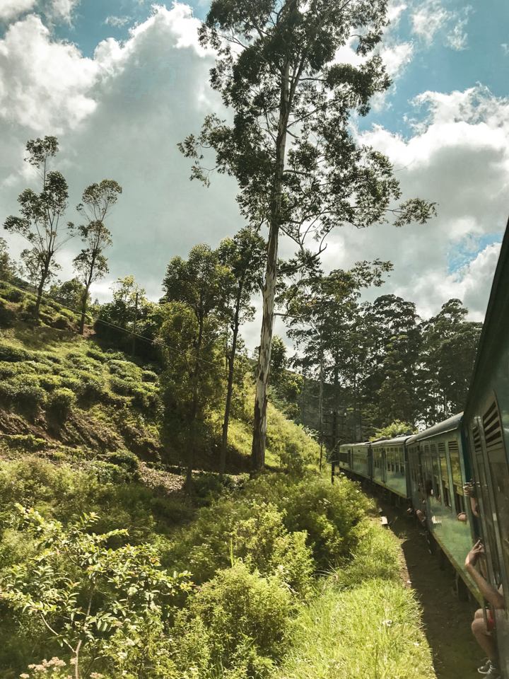 spellbound travels kandy to ella train ride tips