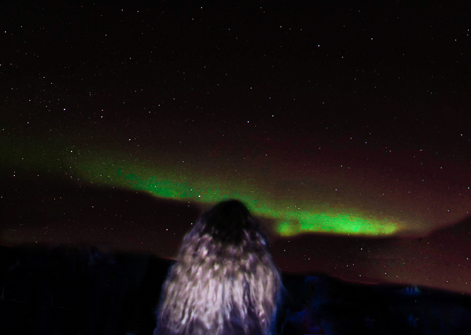spellbound travels iceland northern lights