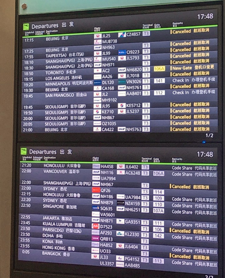 spellbound travels cancelled flights coronavirus