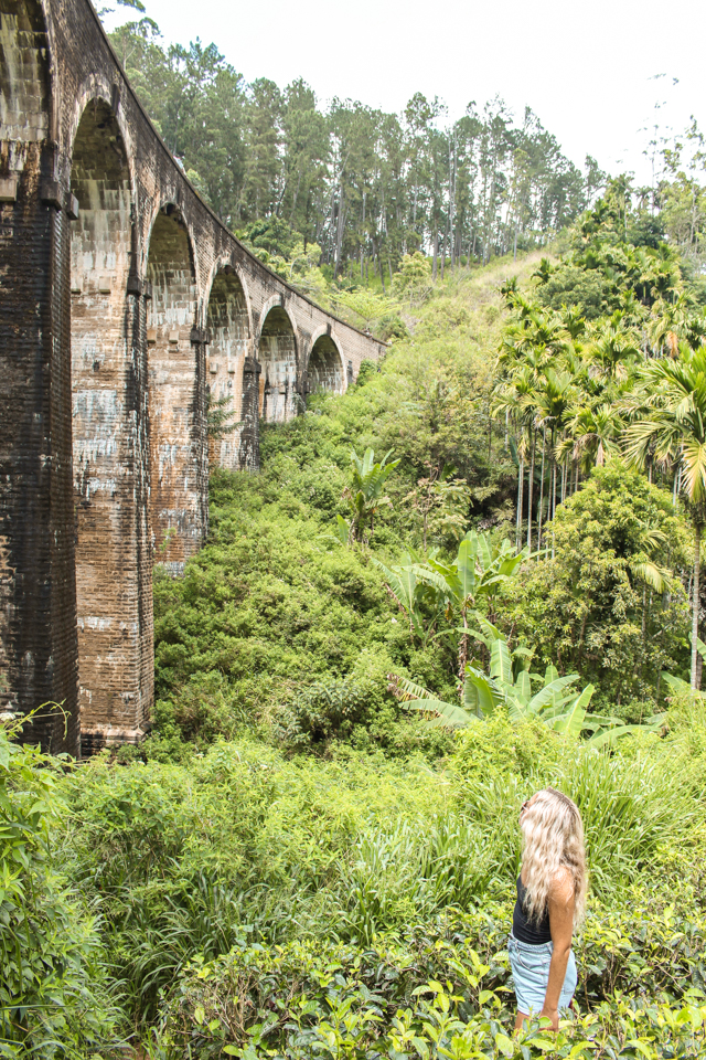 spellbound travels nine arch bridge ella