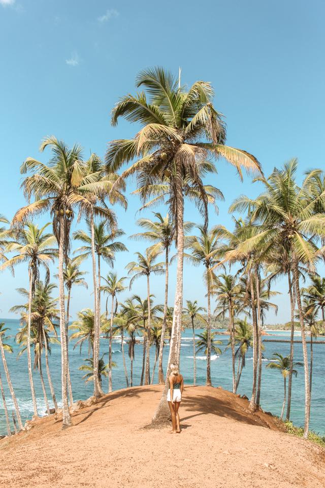 spellbound travels coconut tree hill mirissa beach sri lanka