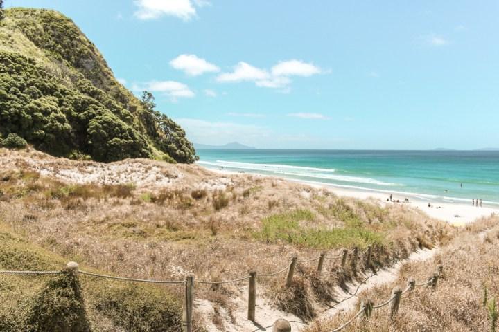 spellbound travels north island beach new zealand