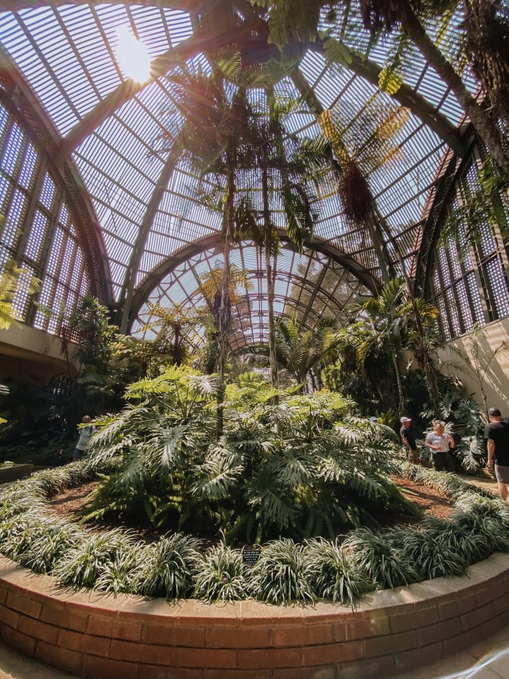 spellbound travels balboa park botanic gardens