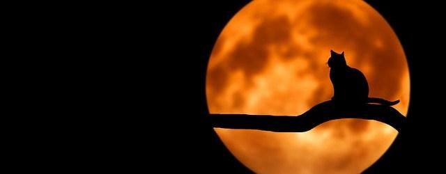 full-moon-ritual