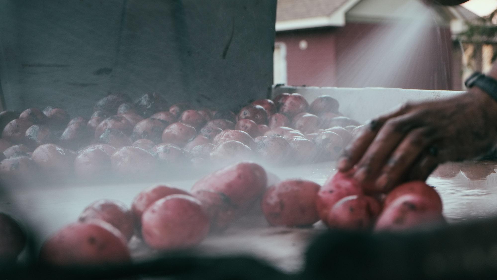 Washing Potatoes