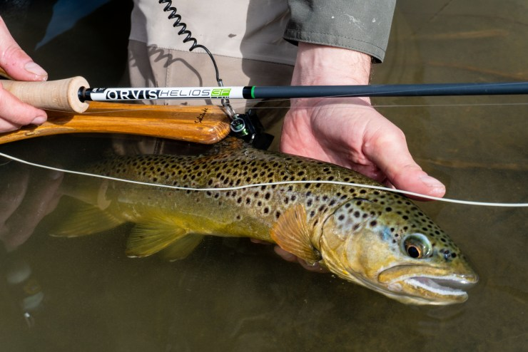 orvis h3f with fish