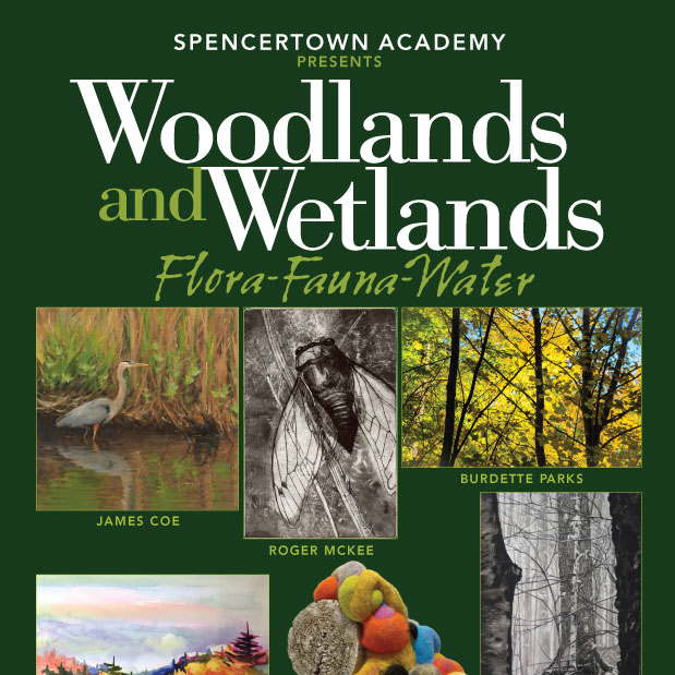 Woodlands and Wetlands show at the Spencertown Academy