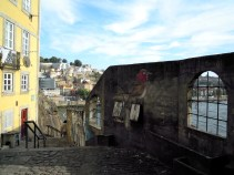 Bird graffiti in Porto