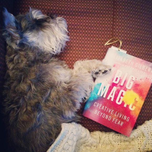 "Cuddly dog and cozy afghan: Perfect accompaniments to reading ""Big Magic"" over the holidays"