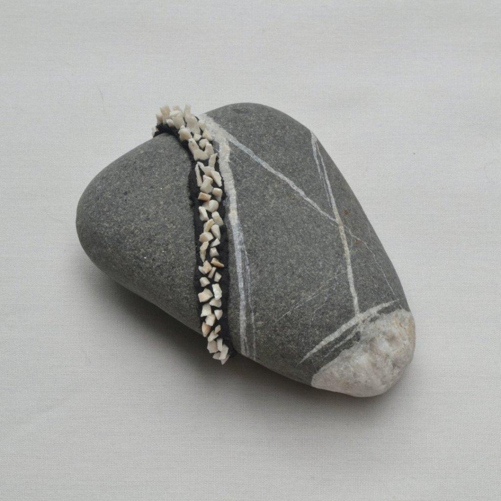 Sperling, pet rock