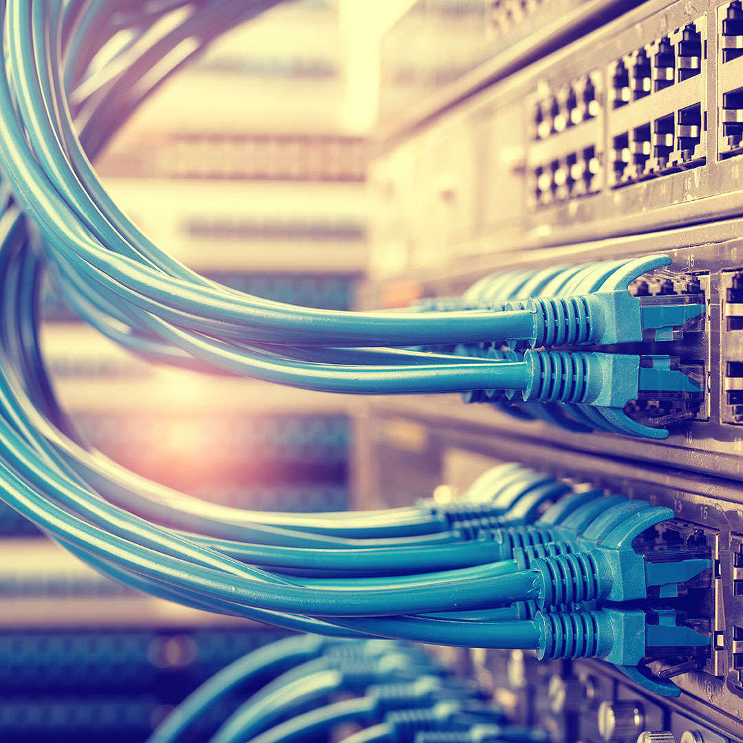 Network Cables - Business Solutions - Savannah