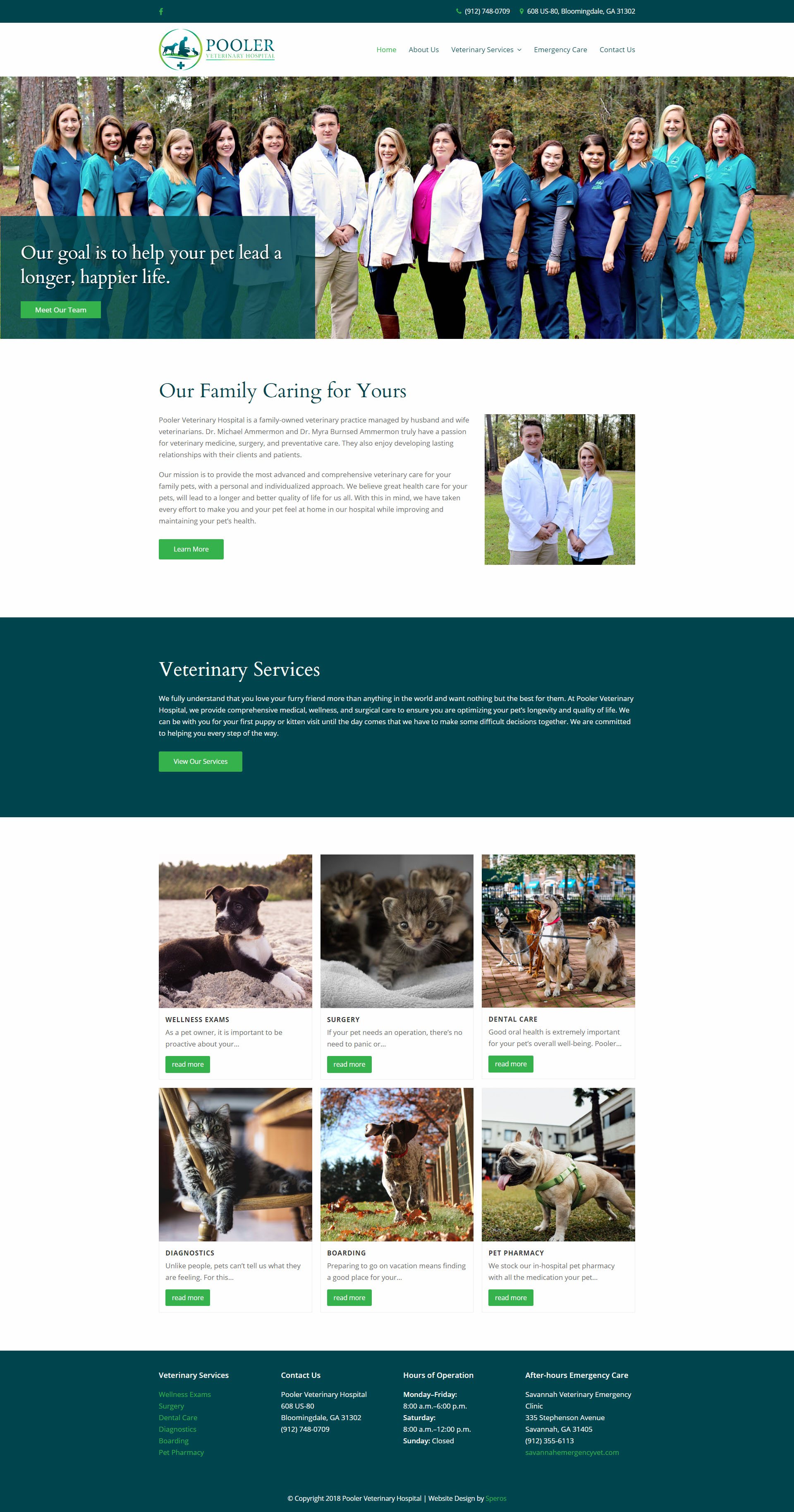 Pooler Veterinary Hospital Home Page - Website Design - Speros