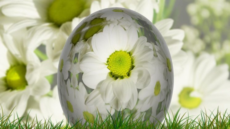 CCSBK-Frühling-Ostern-15